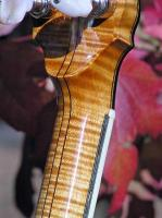 Curly Maple (Tiger Maple) Project by Banjos' 'Hendricks